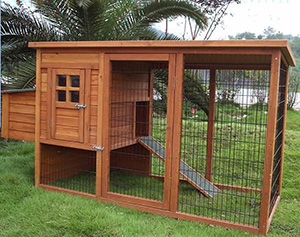 How To Make Your Own Chicken Coop The Readyblog